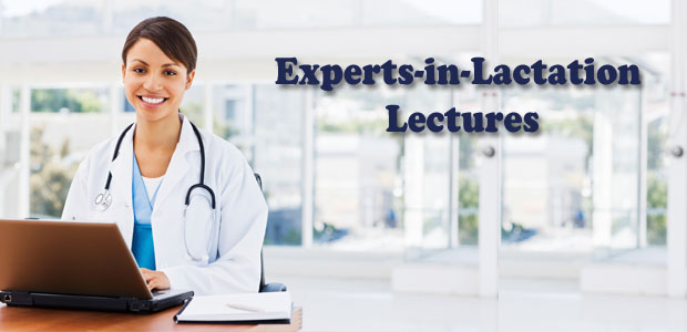 Expert Lectures